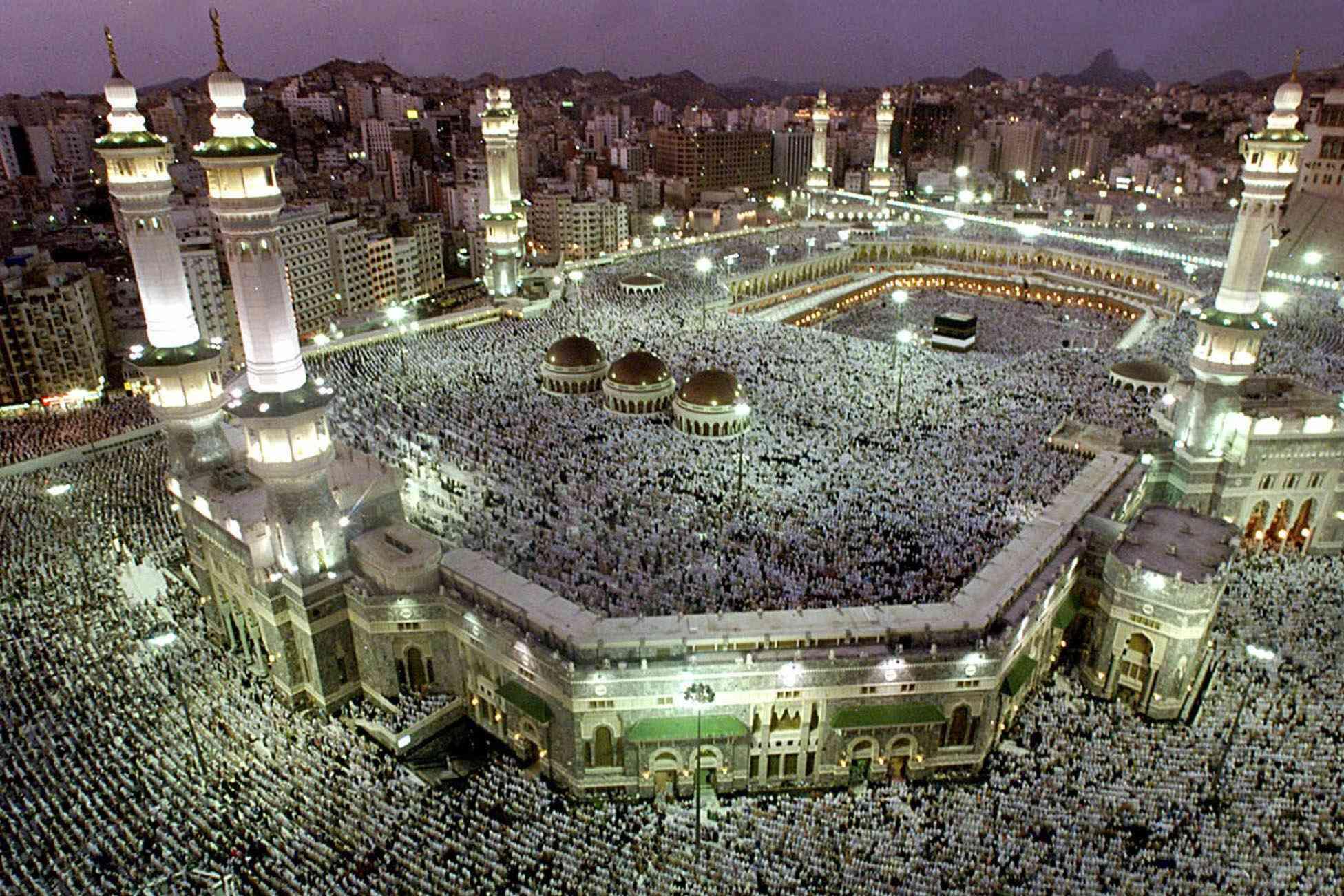 رقم الإفتاء 24 ساعة السعودية
