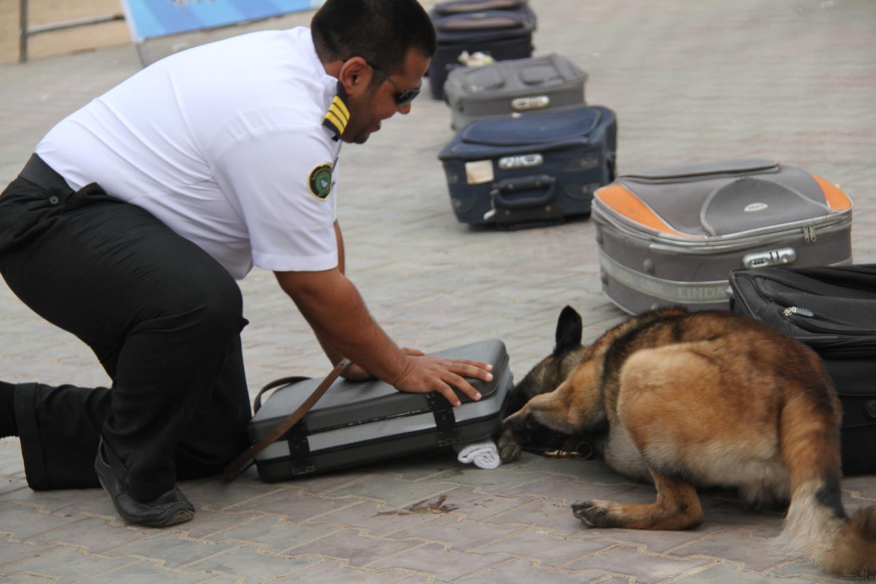 عقوبة التلاعب في إقرار المقتنيات الثمينة للمسافرين